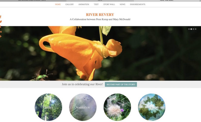 Screenshot of RiverRevery.ca website
